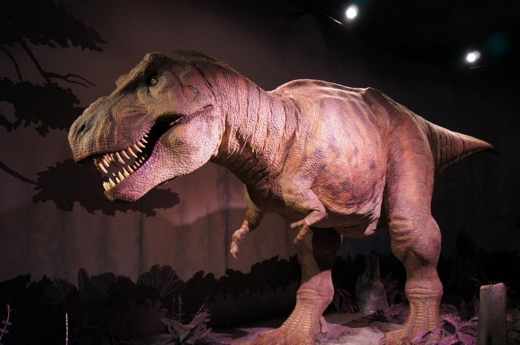 ロンドン自然史博物館の恐竜