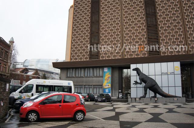 ベルギー自然科学博物館 (2)