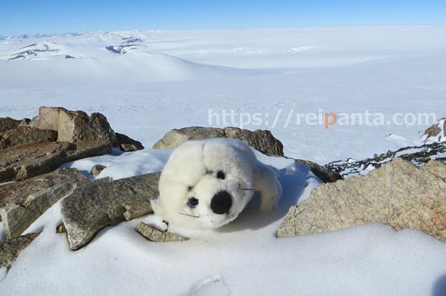 南極出張14