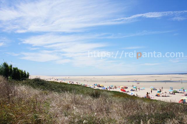 ポルトガルの潮干狩り3